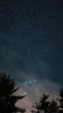 papers.co ni85 night sky star wood space starry blue dark 33 iphone6 wallpaper 250x444 - Tapety pro iPhone ke stažení (2. 7. 2019)
