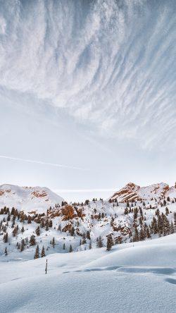 papers.co oc44 snow winter tree sky cloud nature 33 iphone6 wallpaper 250x444 2 - Tapety pro iPhone ke stažení (9. 7. 2019)