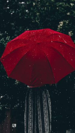 papers.co od13 nature rain umbrella red 33 iphone6 wallpaper 250x444 - Tapety pro iPhone ke stažení (31. 7. 2019)
